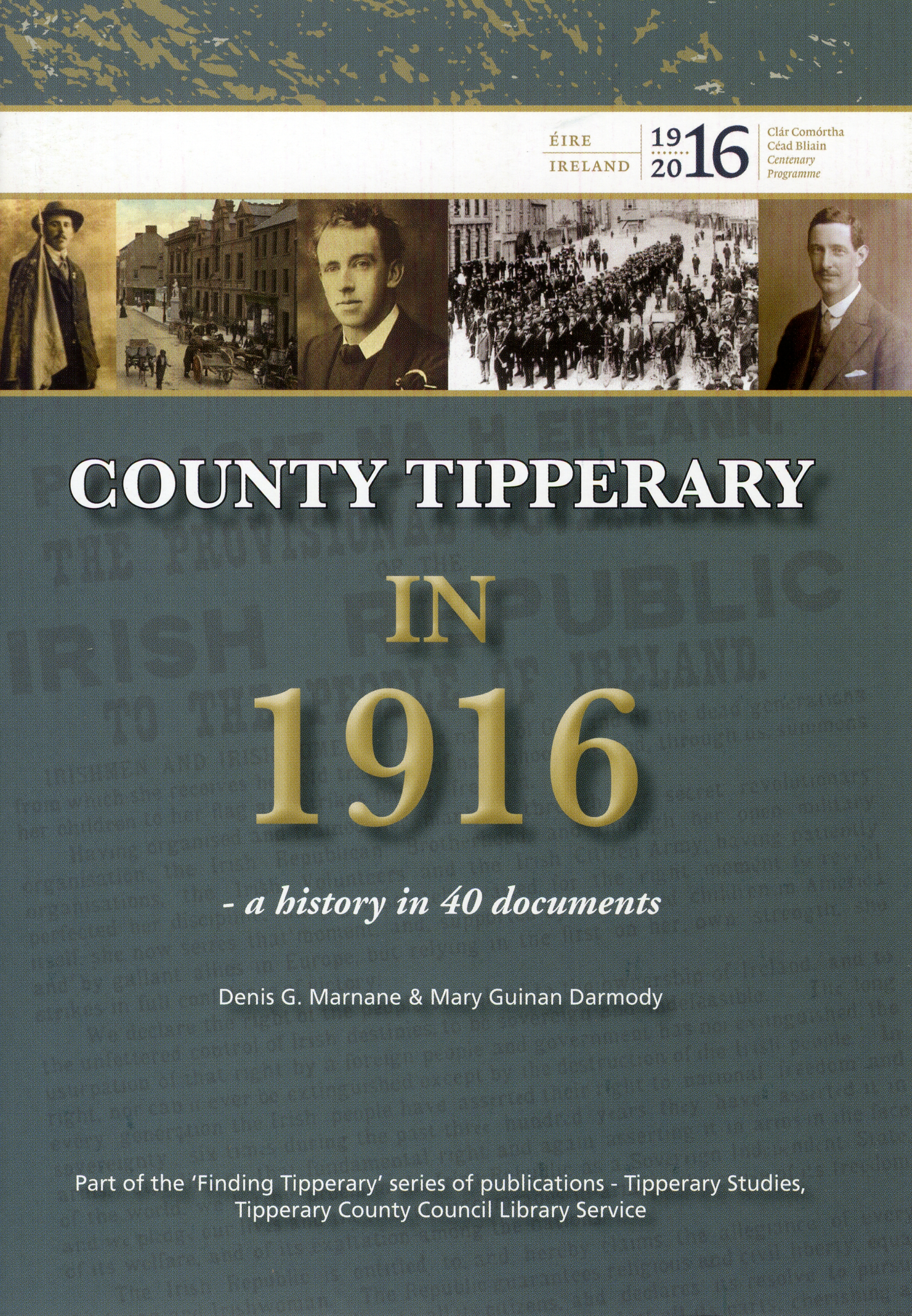 County Tipperary In 1916: A History In 40 Documents