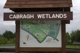 Family Wildlife Discovery Day At Cabragh Wetlands, August 3rd
