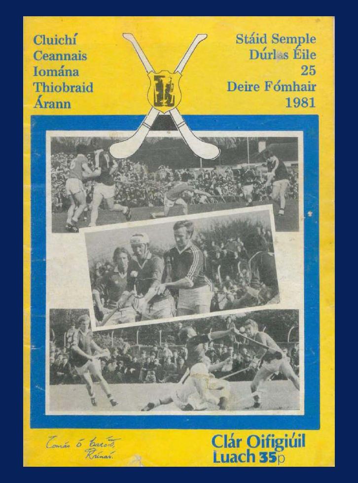 Hurling 1981