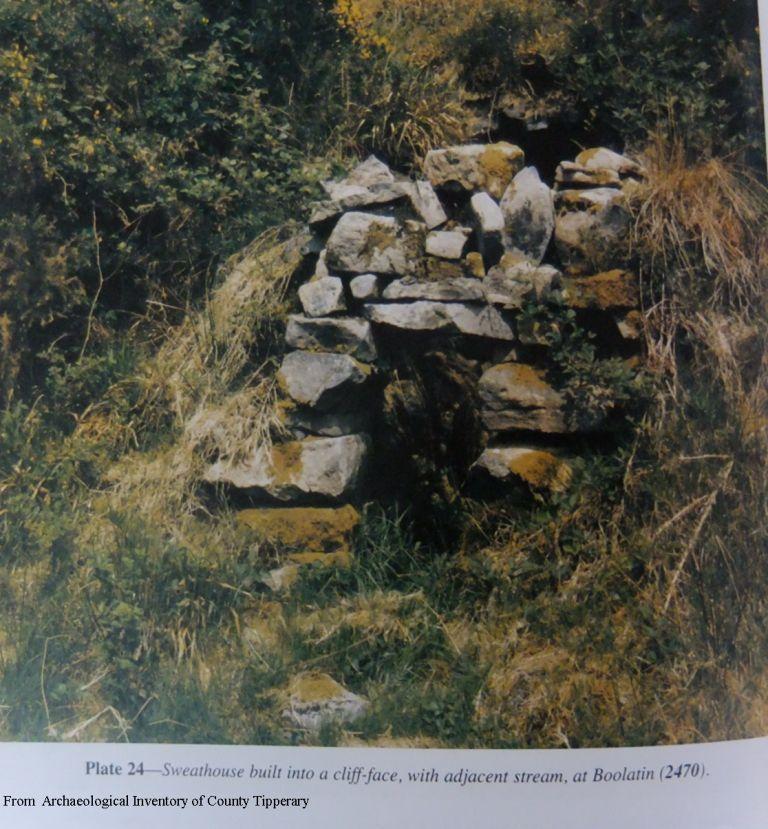 Irish Sweathouses; Rural Health Spas