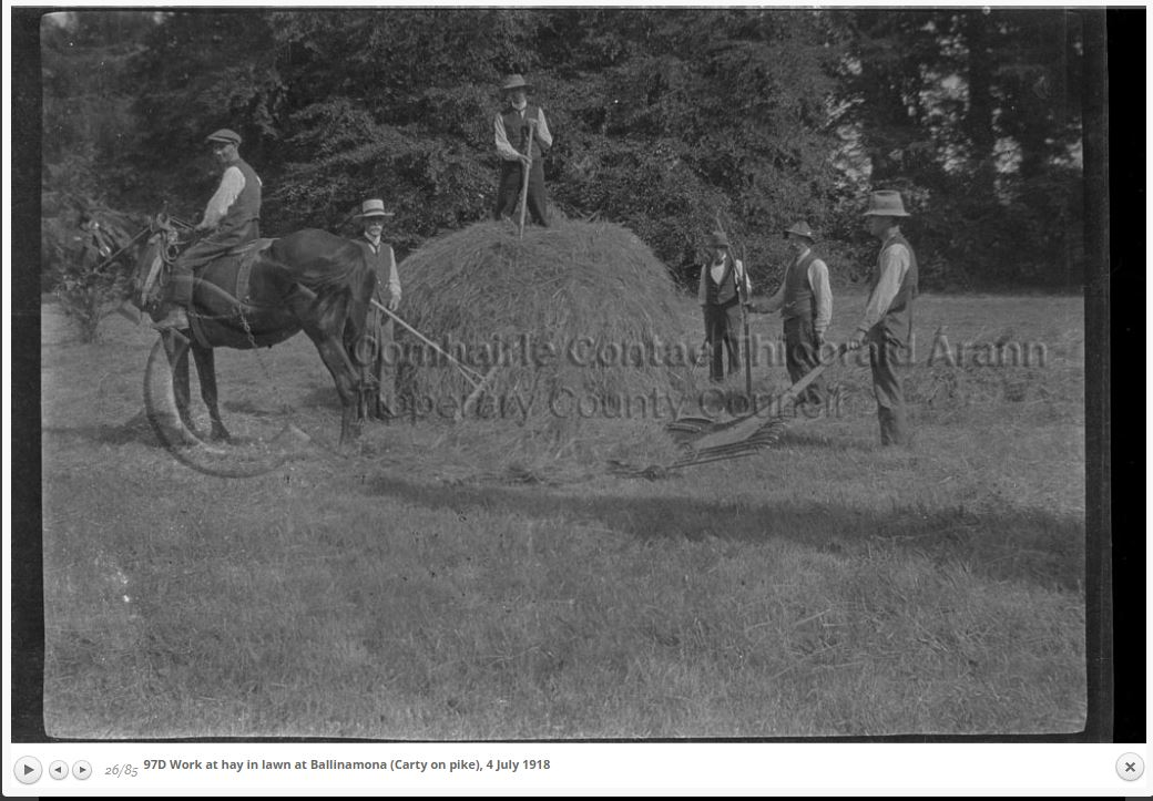 Making Hay In 1918