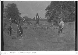 haymaking 1918