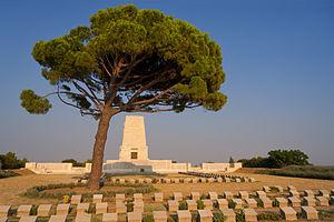 300px-Lone_Pine_Cemetery_2013.07.26
