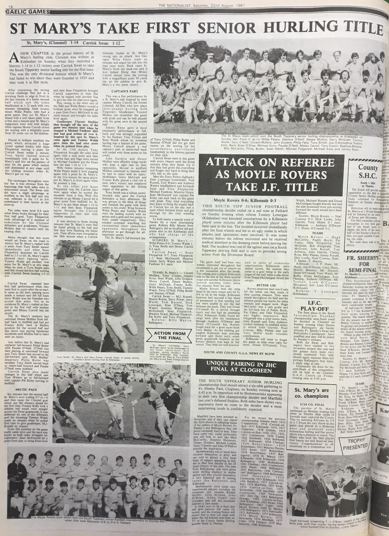 1981 South hurling final