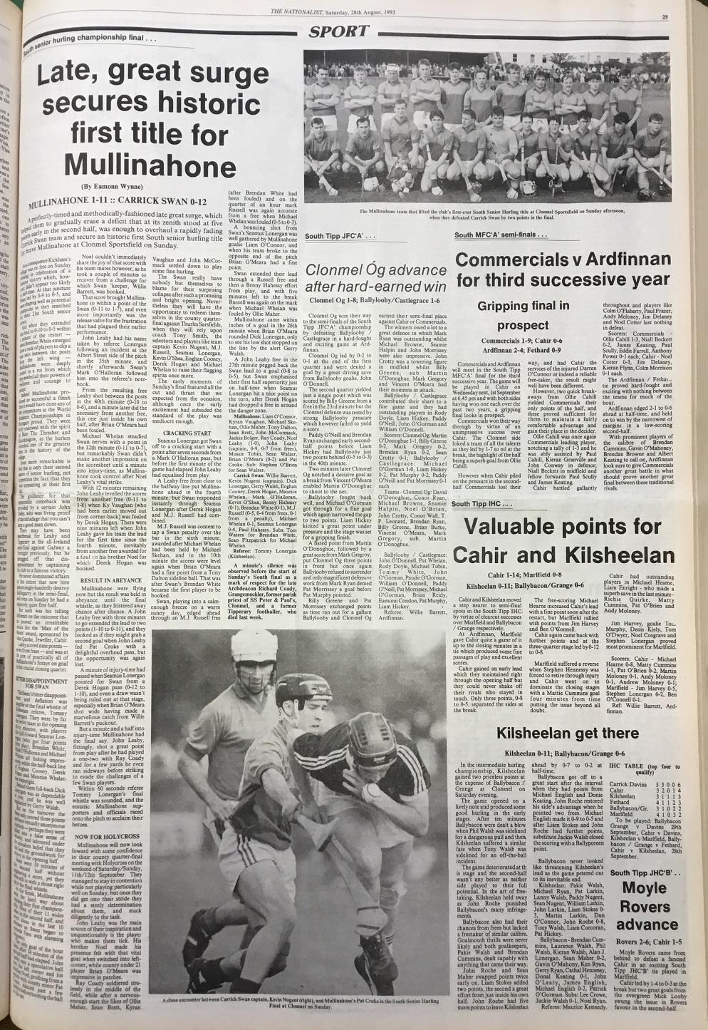 1993 South hurling final