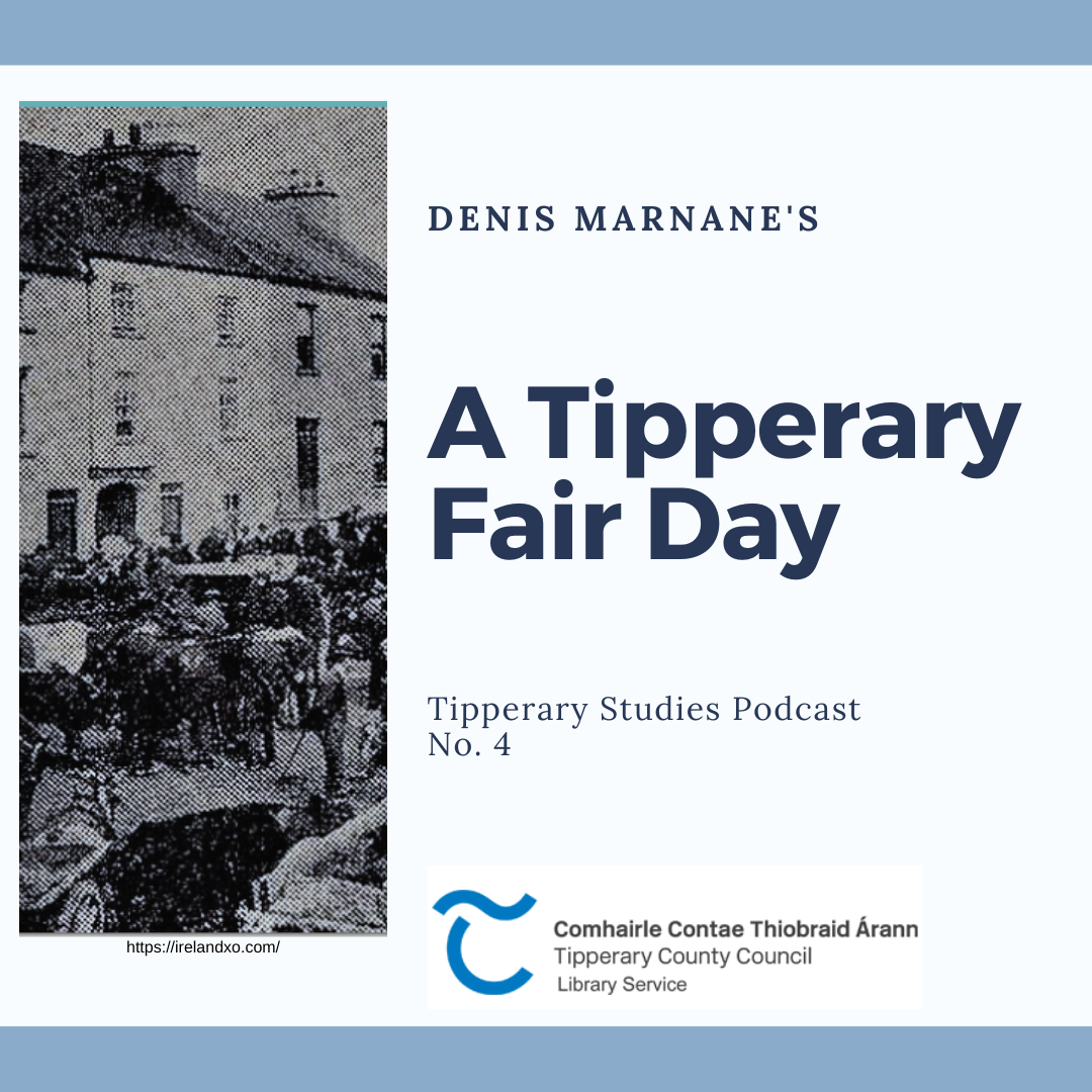 A Tipperary Fair Day