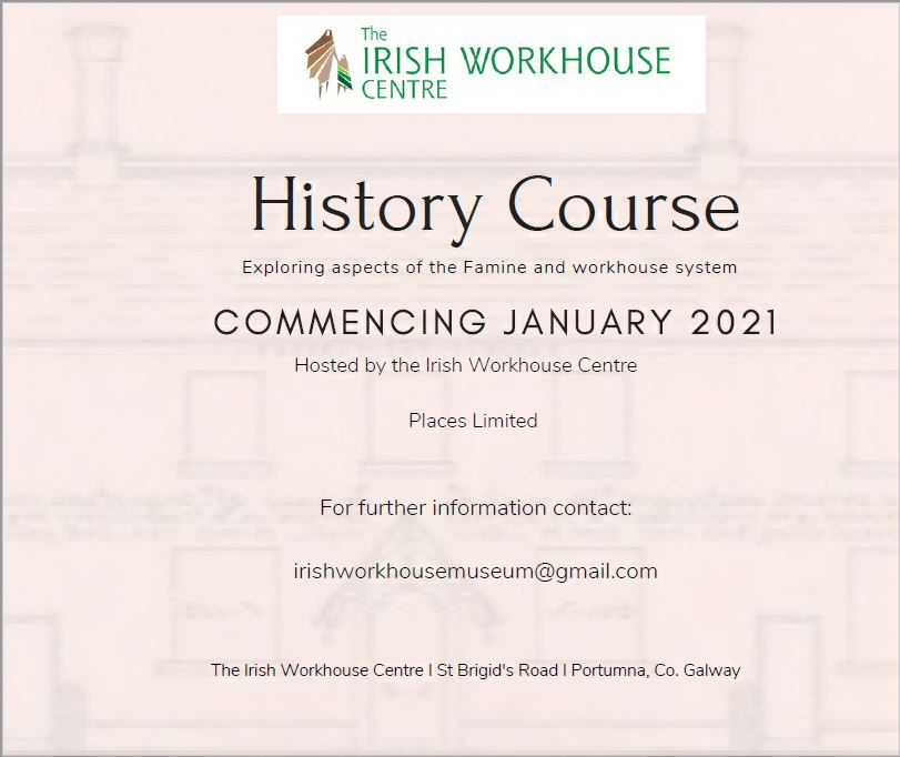 History Course In The Irish Workhouse Centre